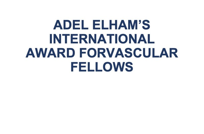 Adel Elham's International Award for Vascular Fellows